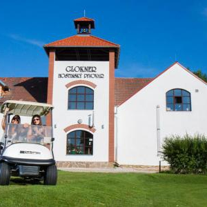 Foto Village Golf Hotel Svachův Dvůr
