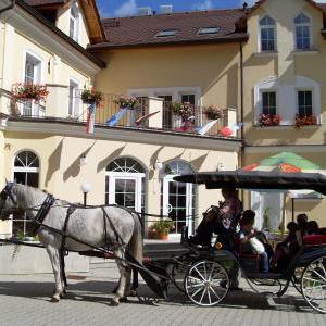 Foto Hotel Goethe Mariánské Lázně