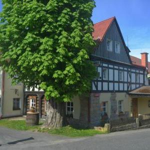 Foto Hotel U Zeleného Stromu Janov